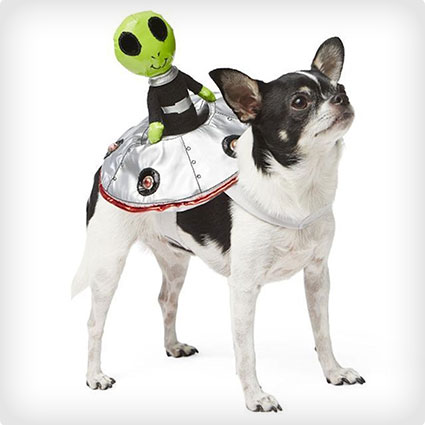 Alien Rider Dog Costume