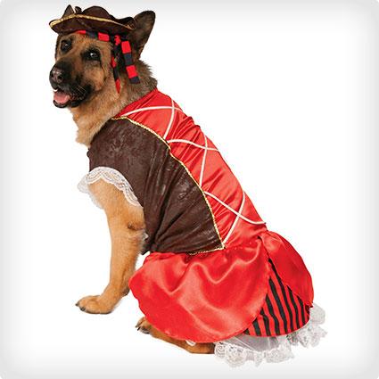 Big Dogs Pirate Girl Costume