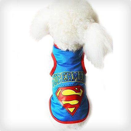 Blue Puppy Superman Costume
