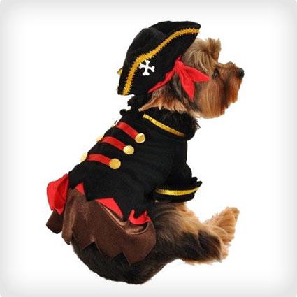 Buccaneer Pirate Dog Costume