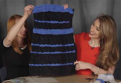 DIY Internet-Breaking Dress