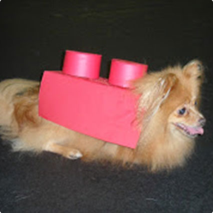 DIY Lego Costume for Dogs