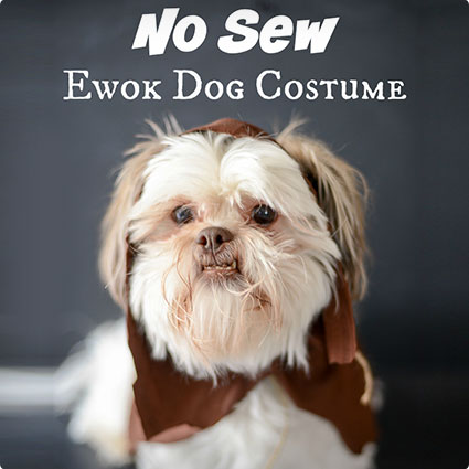 Easy Ewok Dog Costume Tutorial