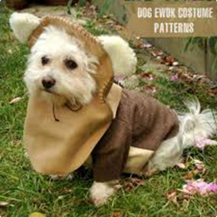 Ewok Dog Costume Patterns