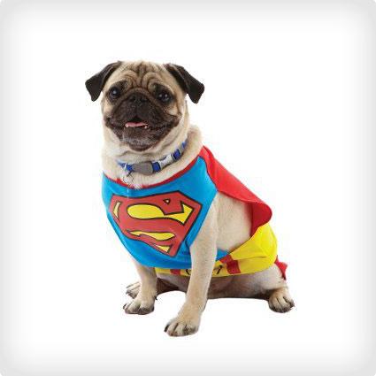 Extra Small Superman Dog Costume
