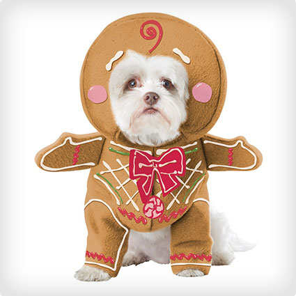 Gingerbread Man Pup Costume