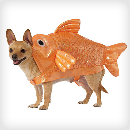 Gold Fish Dog Costume