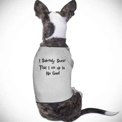 Harry Potter Quote Dog Clothes
