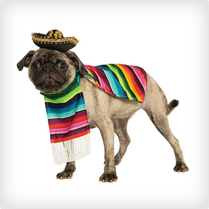 Mexican Pet Costume