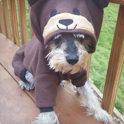 Pet Bear Teddy Bear Hooded Pajamas