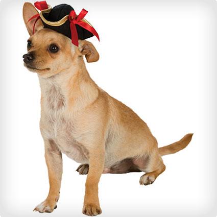 Pet Pirate Hat
