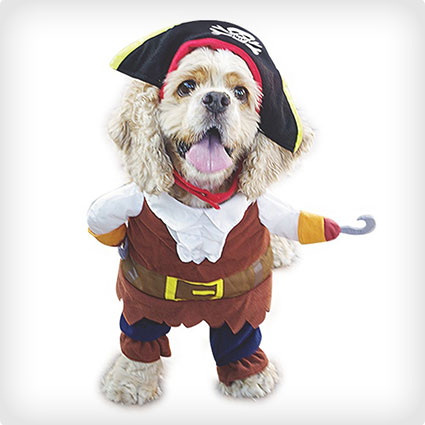 Pets Pirates of the Caribbean Costume