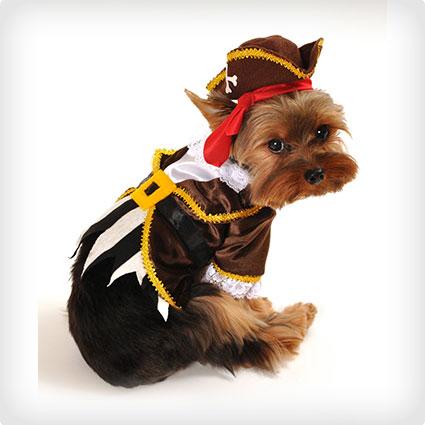 Pirate Captain Dog Costume