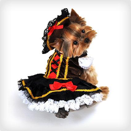 Pirate Girl Dog Costume