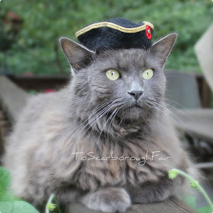 Pirate Pet Hat