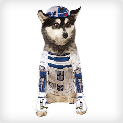 R2D2 Pet Costume