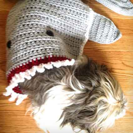 Shark Attack Pet Blanket