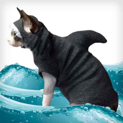 Shark Pet Sweater Costume