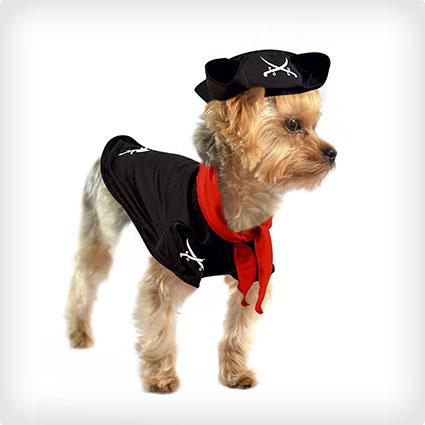 Skeleton Pirate Dog Costume