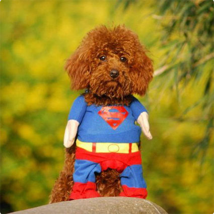 Superhero Costume Superman