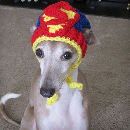 Superman Dog Hat