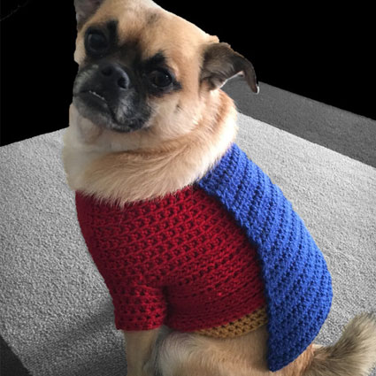 Superman Dog Sweater