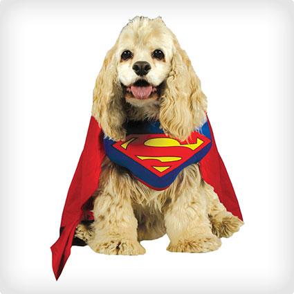 Superman Pet Dog Halloween Costume