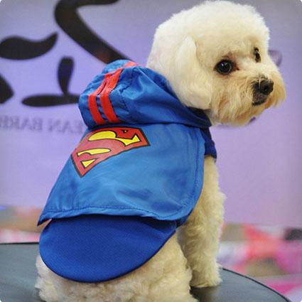 Superman Pet Dog Party Costume