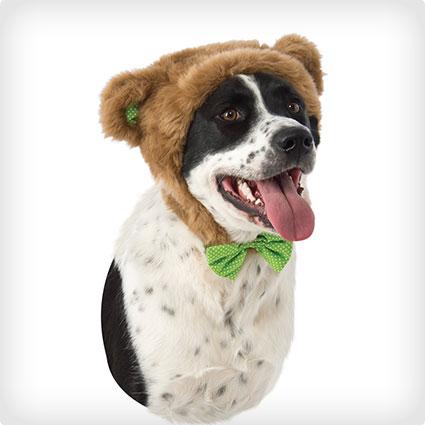 Teddy Bear Hood Dog Costume