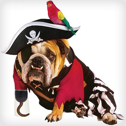 Zelda Pirate Pet Costume