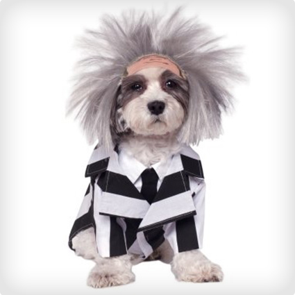 Beetlejuice Dog Costume
