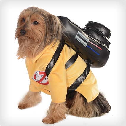 Ghost Busters Dog Costume & 38 Best Dog Halloween Costumes of All Time | Costume Yeti
