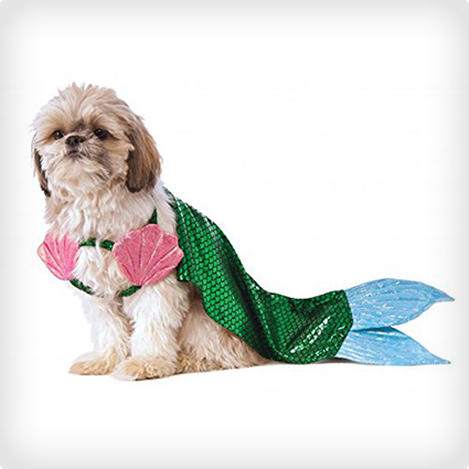 Mermaid Dog Costume & 38 Best Dog Halloween Costumes of All Time | Costume Yeti