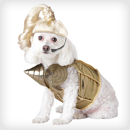 Pop Diva Dog Costume