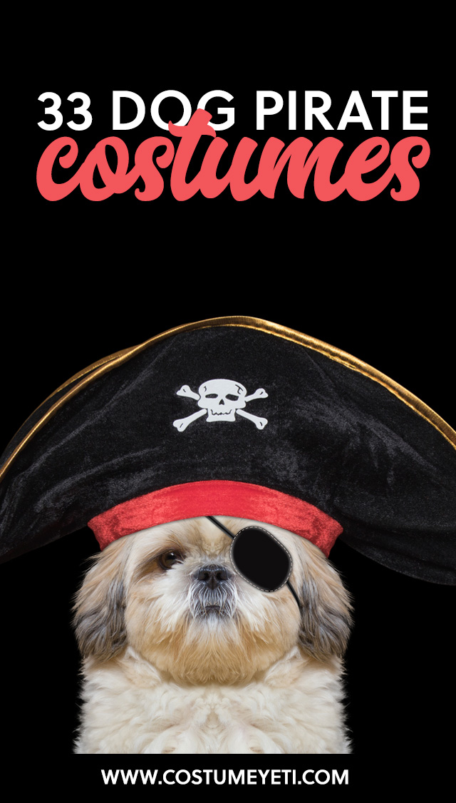AHOY MATEY! Errr' check out these pirate dog costumes. You'll love 'em, I guarantee 'er.