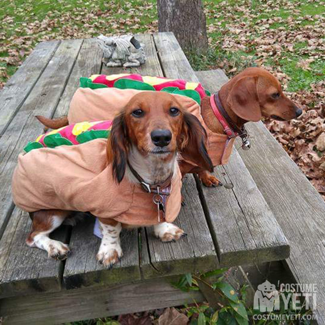 Weiner Dogs Hot Dog Costume