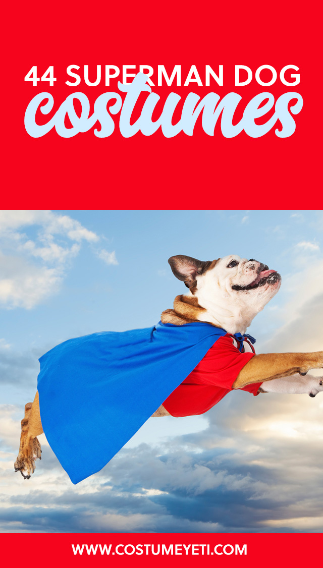 Get your mighty mutt one of these superman dogs costumes this year! Too cute.
