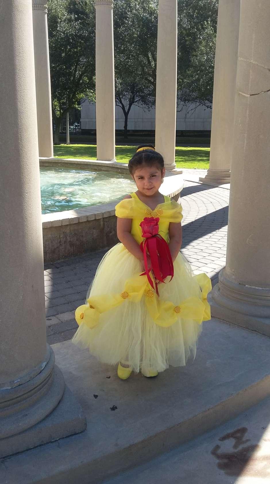 Belle Costume Disney