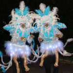 Magical Light-up Ice Phoenix Costumes