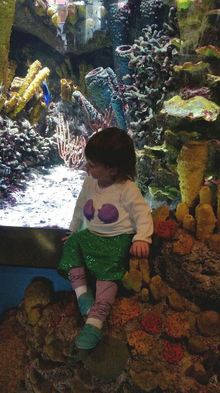 easy toddler little mermaid costume