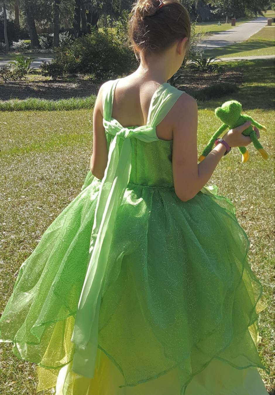 back of princess dress