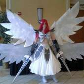 Erza Scarlet Costume from Fairy Tail