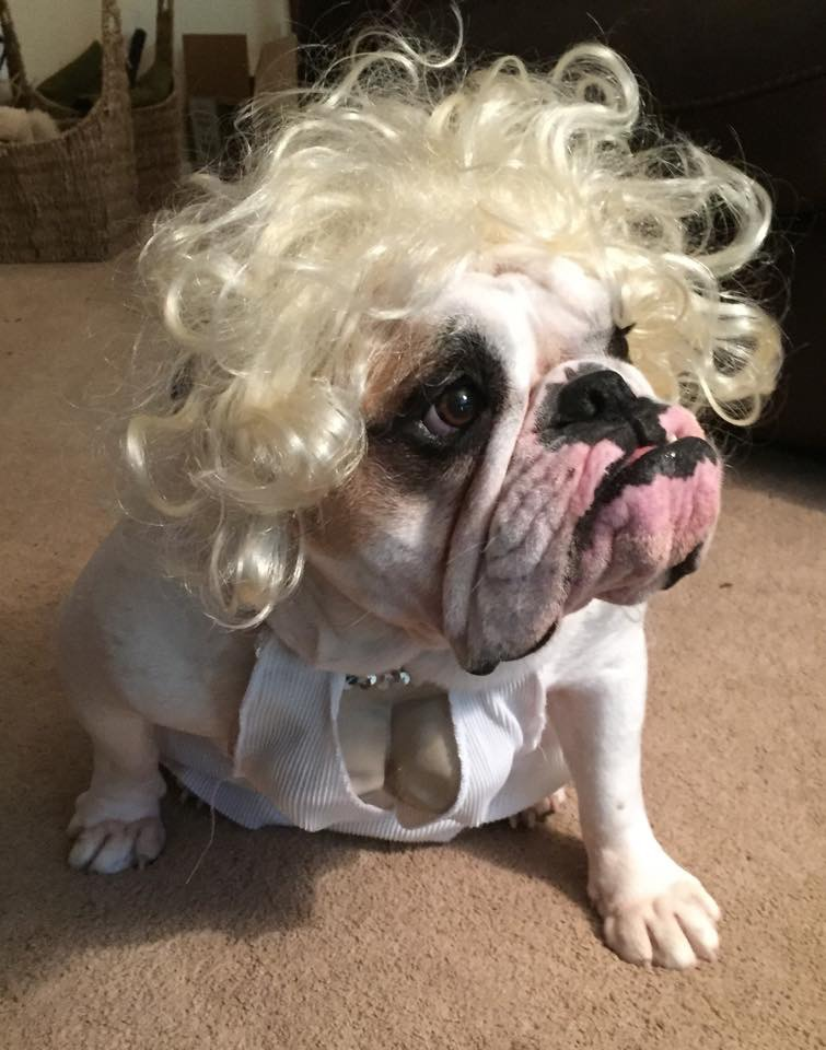 """Marilyn MUTTroe"""