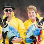 Barking Bad Dog and Owner Costumes (Breaking Bad)