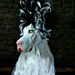 DIY Bride of Frankenstein Costume for Dogs