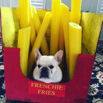 DIY Frenchie Fries Dog Costume