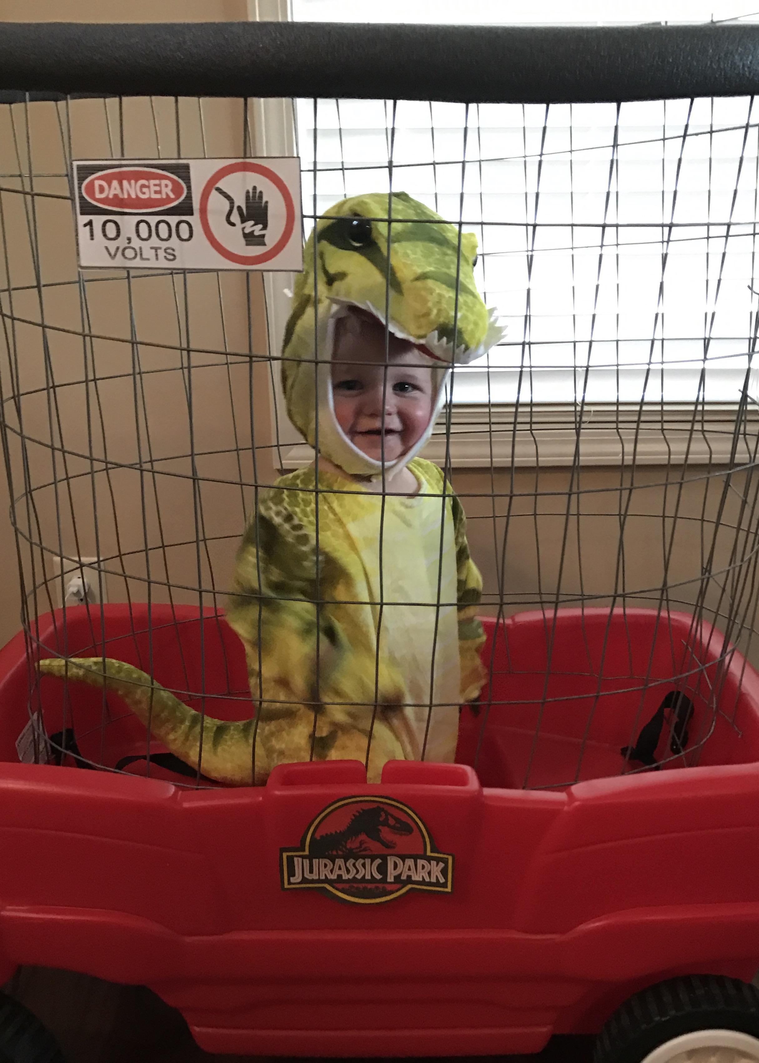 Kaden, baby T Rex