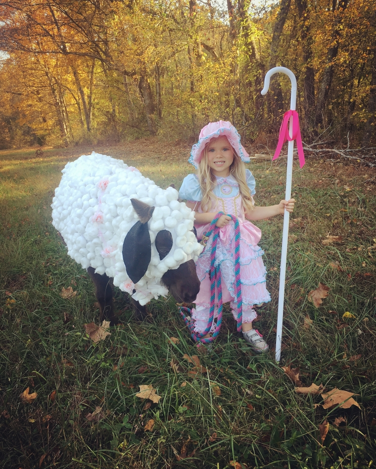 LITTLE BO PEEP AND HER PONY SHEEP