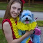 DIY Lilo and Stitch Dog and Owner Costume