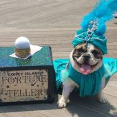 Lola as a Coney Island Fortune Teller